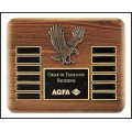 Eagle Perpetual Plaque